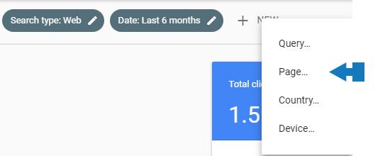 Filtra per pagina Google Search Console
