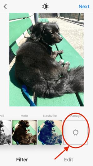 "Schermata in cui è possibile gestire i filtri di Instagram ""title ="" Schermata in cui è possibile gestire i filtri di Instagram ""width ="" 300 ""data-constrained ="" true ""style ="" width: 300px; ""caption ="" false ""srcset ="" https: / /blog.hubspot.com/hs-fs/hubfs/Manage%20Filters%201.png?t=1534646762607&width=150&name=Manage%20Filters%201.png 150w, https://blog.hubspot.com/hs-fs/ hubfs / Manage% 20Filters% 201.png? t = 1534646762607 & width = 300 & name = Manage% 20Filters% 201.png 300w, https://blog.hubspot.com/hs-fs/hubfs/Manage%20Filters%201.png?t = 1534646762607 & width = 450 & name = Manage% 20Filters% 201.png 450w, https://blog.hubspot.com/hs-fs/hubfs/Manage%20Filters%201.png?t=1534646762607&width=600&name=Manage%20Filters%201. png 600w, https://blog.hubspot.com/hs-fs/hubfs/Manage%20Filters%201.png?t=1534646762607&width=750&name=Manage%20Filters%201.png 750w, https: //blog.hubspot. com / hs-fs / hubfs / Manage% 20Filters% 201.png? t = 1534646762607 & width = 900 & name = Manage% 20Filters% 201.png 900w ""sizes ="" (larghezza massima: 300px) 100vw, 300px"