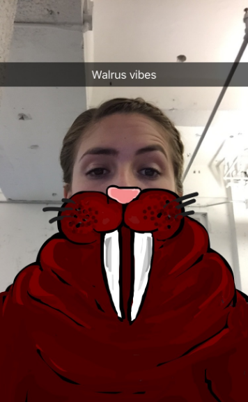 """walrus-vibes-snapchat.png """"title ="""" walrus-vibes-snapchat.png """"width ="""" 356 """"height ="""" 577 """"srcset ="""" https://blog.hubspot.com/hs-fs/hubfs/walrus- vibes-snapchat.png? t = 1539571477767 & width = 178 & height = 289 & name = walrus-vibes-snapchat.png 178w, https://blog.hubspot.com/hs-fs/hubfs/walrus-vibes-snapchat.png?t=1539571477767&width = 356 & height = 577 & name = walrus-vibes-snapchat.png 356w, https://blog.hubspot.com/hs-fs/hubfs/walrus-vibes-snapchat.png?t=1539571477767&width=534&height=866&name=walrus-vibes- snapchat.png 534w, https://blog.hubspot.com/hs-fs/hubfs/walrus-vibes-snapchat.png?t=1539571477767&width=712&height=1154&name=walrus-vibes-snapchat.png 712w, https: // blog.hubspot.com/hs-fs/hubfs/walrus-vibes-snapchat.png?t=1539571477767&width=890&height=1443&name=walrus-vibes-snapchat.png 890w, https://blog.hubspot.com/hs-fs /hubfs/walrus-vibes-snapchat.png?t=1539571477767&width=1068&height=1731&name=walrus-vibes-snapchat.png 1068w """"sizes ="""" (larghezza massima: 356 px) 100vw, 356 px"""