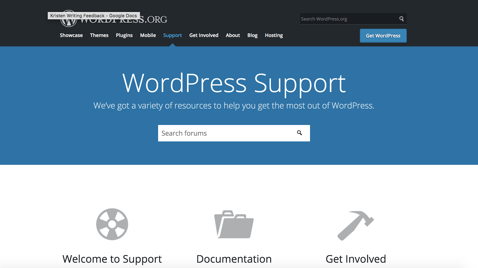 wordpress.org-support-page