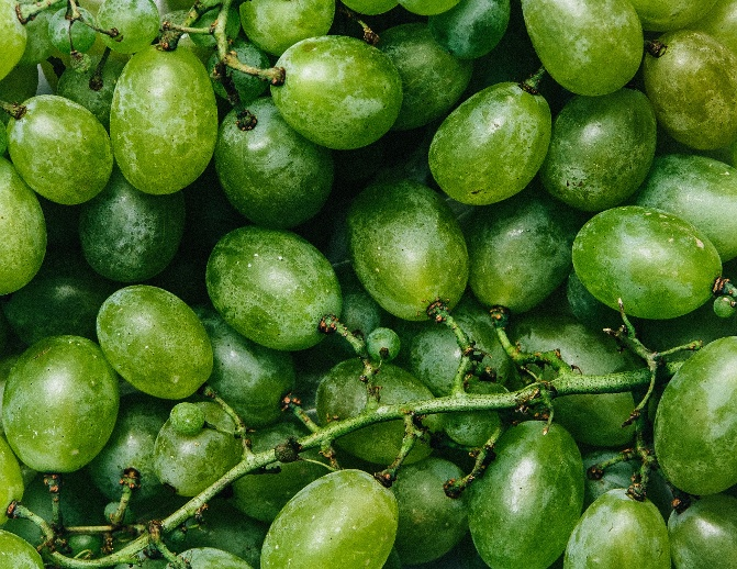 "Fancy Crave stock image of green grapes ""caption ="" false ""data-constrained ="" true ""srcset ="" https://blog.hubspot.com/hs-fs/hubfs/Fancy_Crave.jpg?t=1543204418471&width=336&name=Fancy_Crave .jpg 336w, https://blog.hubspot.com/hs-fs/hubfs/Fancy_Crave.jpg?t=1543204418471&width=671&name=Fancy_Crave.jpg 671w, https://blog.hubspot.com/hs-fs/hubfs /Fancy_Crave.jpg?t=1543204418471&width=1007&name=Fancy_Crave.jpg 1007w, https://blog.hubspot.com/hs-fs/hubfs/Fancy_Crave.jpg?t=1543204418471&width=1342&name=Fancy_Crave.jpg 1342w, https: / /blog.hubspot.com/hs-fs/hubfs/Fancy_Crave.jpg?t=1543204418471&width=1678&name=Fancy_Crave.jpg 1678w, https://blog.hubspot.com/hs-fs/hubfs/Fancy_Crave.jpg?t= 1543204418471 & width = 2013 & name = Fancy_Crave.jpg 2013w ""sizes ="" (larghezza massima: 671 px) 100vw, 671 px"