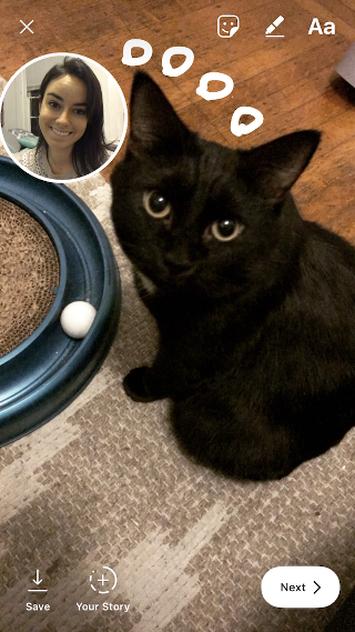 "Instagram photo of a black cat with selfie sticker"" width=""320"" style=""width: 320px; blocco di visualizzazione; margin-left: auto; margin-right: auto;"" srcset=""https://blog.hubspot.com/hs-fs/hubfs/catsticker.png?t=1543306004115&width=160&name=catsticker.png 160w, https://blog.hubspot.com/hs-fs/hubfs/catsticker.png?t=1543306004115&width=320&name=catsticker.png 320w, https://blog.hubspot.com/hs-fs/hubfs/catsticker.png?t=1543306004115&width=480&name=catsticker.png 480w, https://blog.hubspot.com/hs-fs/hubfs/catsticker.png?t=1543306004115&width=640&name=catsticker.png 640w, https://blog.hubspot.com/hs-fs/hubfs/catsticker.png?t=1543306004115&width=800&name=catsticker.png 800w, https://blog.hubspot.com/hs-fs/hubfs/catsticker.png?t=1543306004115&width=960&name=catsticker.png 960w"" sizes=""(max-width: 320px) 100vw, 320px"