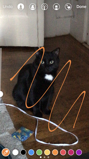 "Orange pen added to Instagram Story of a black cat"" width=""287"" style=""width: 287px; blocco di visualizzazione; margin-left: auto; margin-right: auto;"" srcset=""https://blog.hubspot.com/hs-fs/hubfs/colors3.png?t=1543306004115&width=144&name=colors3.png 144w, https://blog.hubspot.com/hs-fs/hubfs/colors3.png?t=1543306004115&width=287&name=colors3.png 287w, https://blog.hubspot.com/hs-fs/hubfs/colors3.png?t=1543306004115&width=431&name=colors3.png 431w, https://blog.hubspot.com/hs-fs/hubfs/colors3.png?t=1543306004115&width=574&name=colors3.png 574w, https://blog.hubspot.com/hs-fs/hubfs/colors3.png?t=1543306004115&width=718&name=colors3.png 718w, https://blog.hubspot.com/hs-fs/hubfs/colors3.png?t=1543306004115&width=861&name=colors3.png 861w"" sizes=""(max-width: 287px) 100vw, 287px"