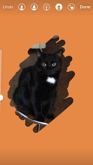 """Orange background added to Instagram Story of a black cat"""" width=""""320"""" style=""""width: 320px; blocco di visualizzazione; margin-left: auto; margin-right: auto;"""" srcset=""""https://blog.hubspot.com/hs-fs/hubfs/colors5.png?t=1543306004115&width=160&name=colors5.png 160w, https://blog.hubspot.com/hs-fs/hubfs/colors5.png?t=1543306004115&width=320&name=colors5.png 320w, https://blog.hubspot.com/hs-fs/hubfs/colors5.png?t=1543306004115&width=480&name=colors5.png 480w, https://blog.hubspot.com/hs-fs/hubfs/colors5.png?t=1543306004115&width=640&name=colors5.png 640w, https://blog.hubspot.com/hs-fs/hubfs/colors5.png?t=1543306004115&width=800&name=colors5.png 800w, https://blog.hubspot.com/hs-fs/hubfs/colors5.png?t=1543306004115&width=960&name=colors5.png 960w"""" sizes=""""(max-width: 320px) 100vw, 320px"""