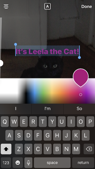 "Rainbow color bar in Instagram"" width=""320"" style=""width: 320px; blocco di visualizzazione; margin-left: auto; margin-right: auto;"" srcset=""https://blog.hubspot.com/hs-fs/hubfs/rainbow2.png?t=1543306004115&width=160&name=rainbow2.png 160w, https://blog.hubspot.com/hs-fs/hubfs/rainbow2.png?t=1543306004115&width=320&name=rainbow2.png 320w, https://blog.hubspot.com/hs-fs/hubfs/rainbow2.png?t=1543306004115&width=480&name=rainbow2.png 480w, https://blog.hubspot.com/hs-fs/hubfs/rainbow2.png?t=1543306004115&width=640&name=rainbow2.png 640w, https://blog.hubspot.com/hs-fs/hubfs/rainbow2.png?t=1543306004115&width=800&name=rainbow2.png 800w, https://blog.hubspot.com/hs-fs/hubfs/rainbow2.png?t=1543306004115&width=960&name=rainbow2.png 960w"" sizes=""(max-width: 320px) 100vw, 320px"