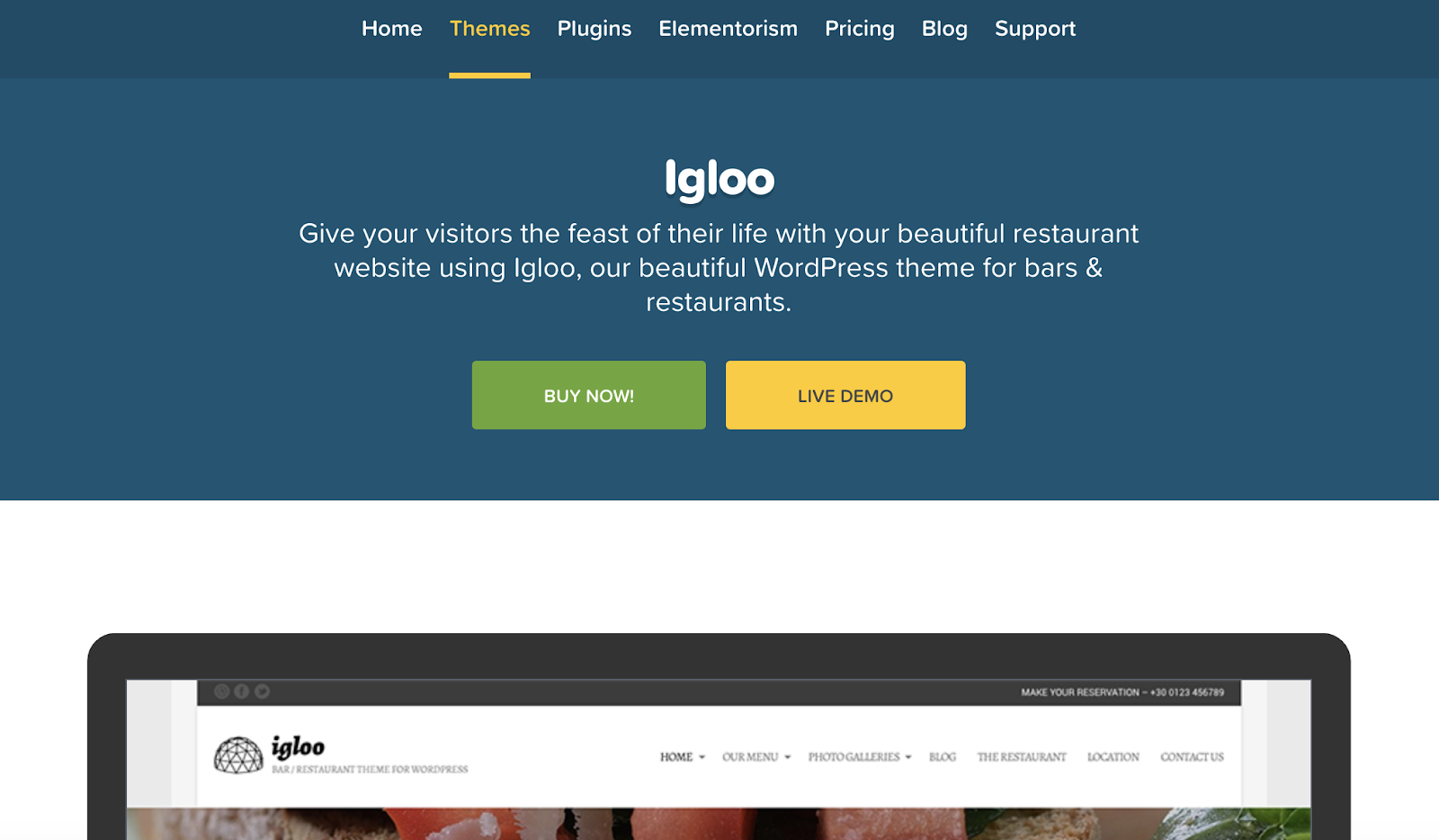 igloo-wordpress-tema