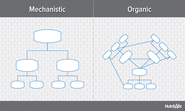 "Meccanica vs struttura organizzativa organica, confrontata in due diagrammi fianco a fianco ""width ="" 669 ""data-constrained ="" true ""style ="" display: block; margin-left: auto; margin-right: auto; ""srcset ="" https://blog.hubspot.com/hs-fs/hub/53/file-2160422824-jpg/offers/org-charts-mechanistic-vs-organic-blog.jpg? width = 335 & name = org-charts-mechanistic-vs-organic-blog.jpg 335w, https://blog.hubspot.com/hs-fs/hub/53/file-2160422824-jpg/offers/org-charts-mechanistic -vs-organic-blog.jpg? width = 669 & name = org-charts-mechanistic-vs-organic-blog.jpg 669w, https://blog.hubspot.com/hs-fs/hub/53/file-2160422824- jpg / offers / org-charts-mechanistic-vs-organic-blog.jpg? width = 1004 & name = organigrammi-meccanicistico-vs-organico-blog.jpg 1004w, https://blog.hubspot.com/hs-fs /hub/53/file-2160422824-jpg/offers/org-charts-mechanistic-vs-organic-blog.jpg?width=1338&name=org-charts-mechanistic-vs-organic-blog.jpg 1338w, https: // blog.hubspot.com/hs-fs/hub/53/file-2160422824-jpg/offers/org-charts-mechanistic-vs-organic-blog.jpg?width=1673&name=org-charts-mechanistic-vs-organic- blog.jpg 1673w, https://blog.hubspot.com/hs-fs/hub/53/file-2160422824-jpg/offers/org-charts-mechanistic-vs-organic-blog.j pg? width = 2007 & name = org-charts-mechanistic-vs-organic-blog.jpg 2007w ""sizes ="" (larghezza massima: 669px) 100vw, 669px"