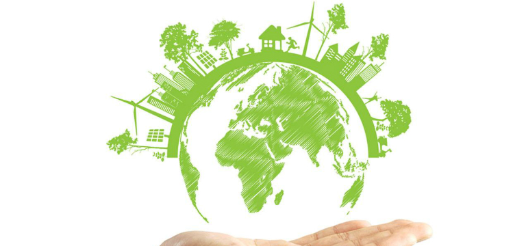 7 account Instagram ecologici da seguire