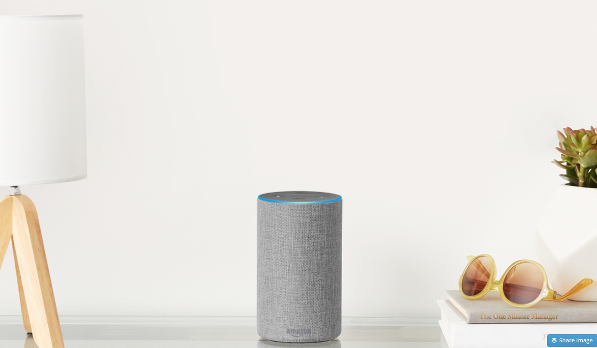 Amazon Light Grey Echo