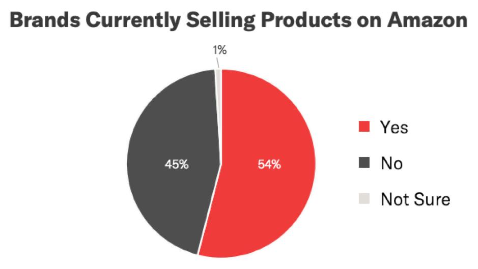 Marchi che attualmente vendono prodotti su Amazon