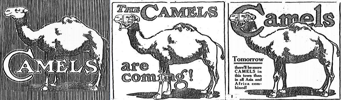 lancio del prodotto delle sigarette dei cammelli