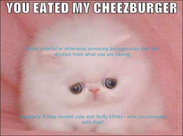 immagine di gatto lanuginoso con testo mal posato per powerpoint punta su immagini che distraggono
