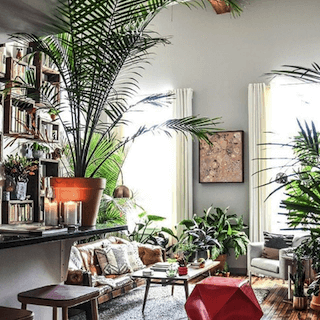 "Appartamento Therapy account Instagram che mostra un soggiorno ispirato alle piante ""srcset ="" https://blog.hubspot.com/hs-fs/hubfs/apartment-therapy-plant-living-room.png?width=137&name=apartment-therapy- plant-living-room.png 137w, https://blog.hubspot.com/hs-fs/hubfs/apartment-therapy-plant-living-room.png?width=273&name=apartment-therapy-plant-living-room .png 273w, https://blog.hubspot.com/hs-fs/hubfs/apartment-therapy-plant-living-room.png?width=410&name=apartment-therapy-plant-living-room.png 410w, https : //blog.hubspot.com/hs-fs/hubfs/apartment-therapy-plant-living-room.png? width = 546 & name = apartment-therapy-plant-living-room.png 546w, https: // blog. hubspot.com/hs-fs/hubfs/apartment-therapy-plant-living-room.png?width=683&name=apartment-therapy-plant-living-room.png 683w, https://blog.hubspot.com/hs -fs / hubfs / apartment-therapy-plant-living-room.png? width = 819 & name = apartment-therapy-plant-living-room.png 819w ""sizes ="" (larghezza massima: 273px) 100vw, 273px"