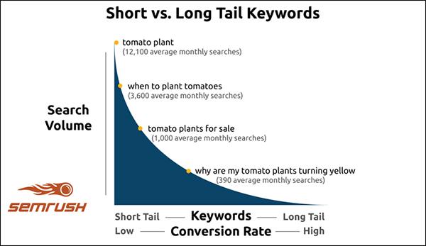 immagine che spiega quali sono le parole chiave long-tail
