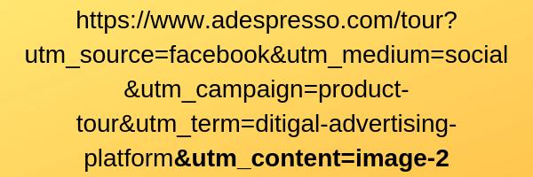 URL + fonte / mezzo / campagna / termine / parametro di contenuto