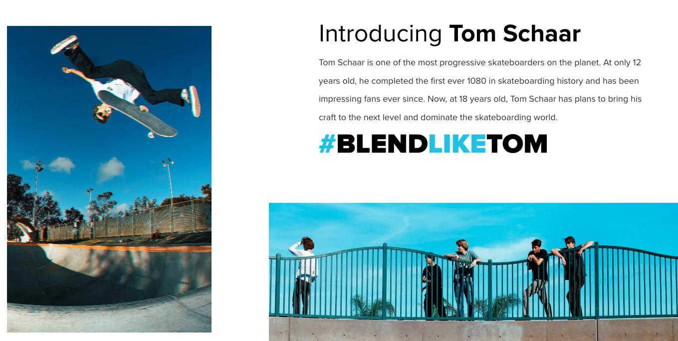 pagina di destinazione dei frullatori per demografia skateboard