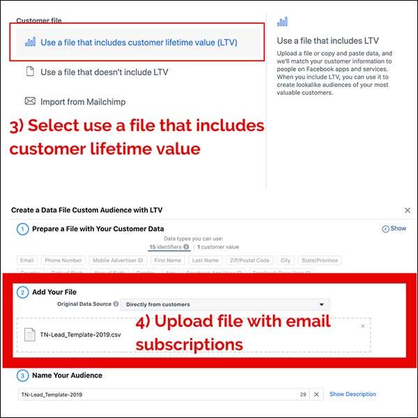 Quindi si desidera utilizzare un file che includa il lifetime value del cliente (LTV). Da lì aggiungerai il tuo file di sottoscrittori email.