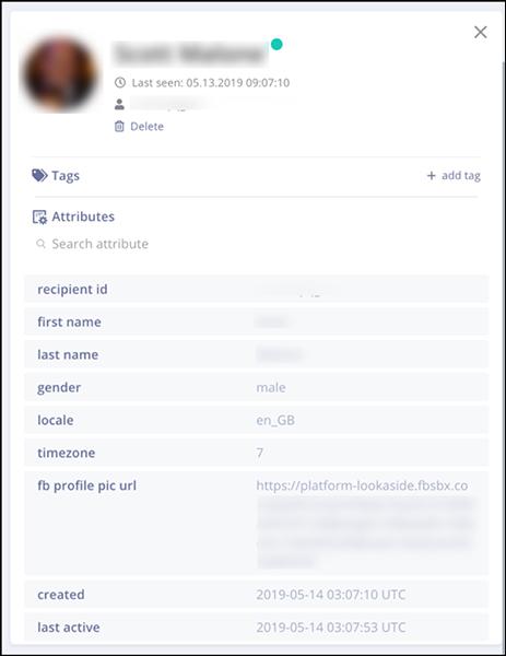 Dettagli di un cliente profilato da Mobile Monkey
