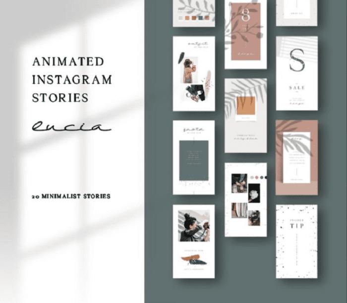 Modello di storie Instagram animate