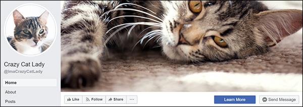 Pagina Facebook di Cat Lady
