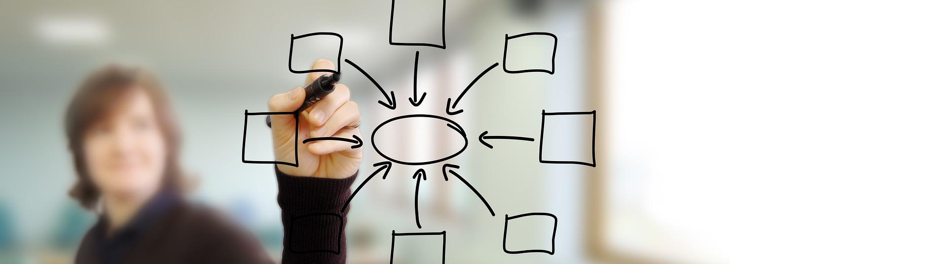 Perché il branding online è importante per le aziende Edutech