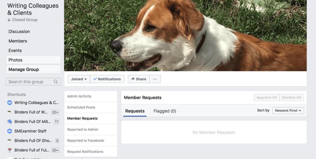 moderare i gruppi di Facebook per le imprese