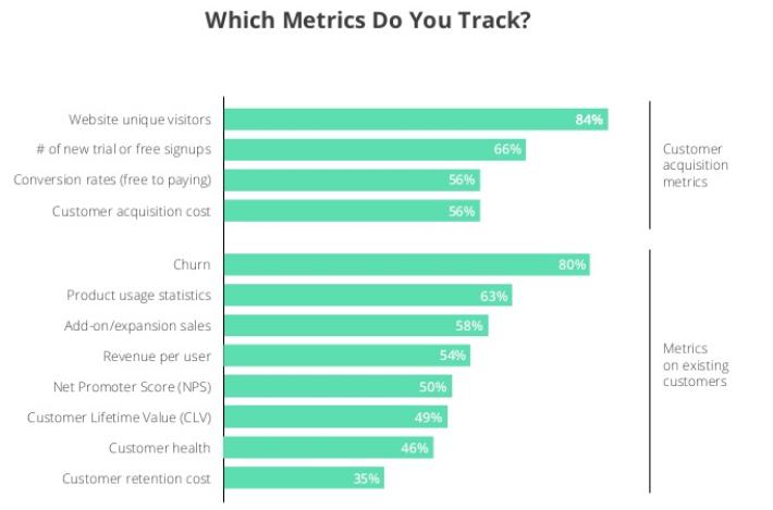 grafico che mostra quali metriche saas sono più comuni.