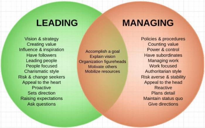 Leader contro gestione
