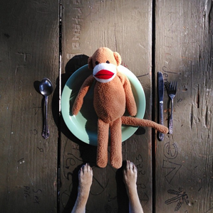 "pug-eating-toy.png ""title ="" pug-eating-toy.png ""larghezza ="" 300 ""dati vincolati ="" stile vero ""="" larghezza: 300px; margine: 0px auto; ""srcset ="" https://blog.hubspot.com/hs-fs/hubfs/pug-eating-toy.png?width=150&name=pug-eating-toy.png 150w, https: // blog.hubspot.com/hs-fs/hubfs/pug-eating-toy.png?width=300&name=pug-eating-toy.png 300w, https://blog.hubspot.com/hs-fs/hubfs/pug -eating-toy.png? larghezza = 450 & nome = pug-eating-toy.png 450w, https://blog.hubspot.com/hs-fs/hubfs/pug-eating-toy.png?width=600&name=pug- eating-toy.png 600w, https://blog.hubspot.com/hs-fs/hubfs/pug-eating-toy.png?width=750&name=pug-eating-toy.png 750w, https: // blog. hubspot.com/hs-fs/hubfs/pug-eating-toy.png?width=900&name=pug-eating-toy.png 900w ""size ="" (larghezza massima: 300px) 100vw, 300px"