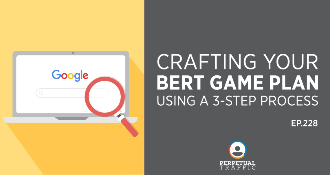 Strategia BERT
