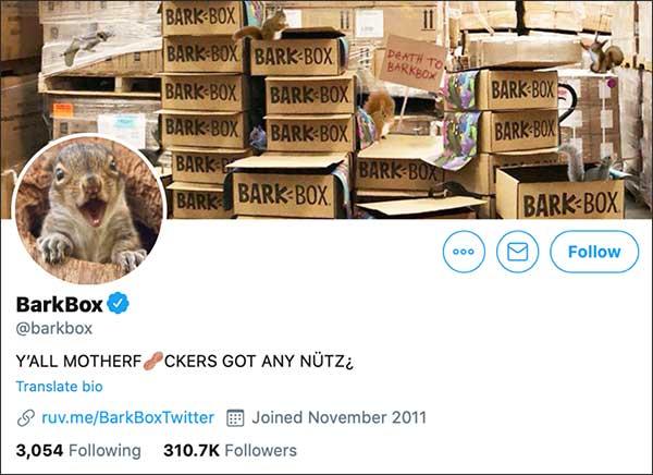 L'account Twitter di BarkBox è stato rilevato dagli scoiattoli