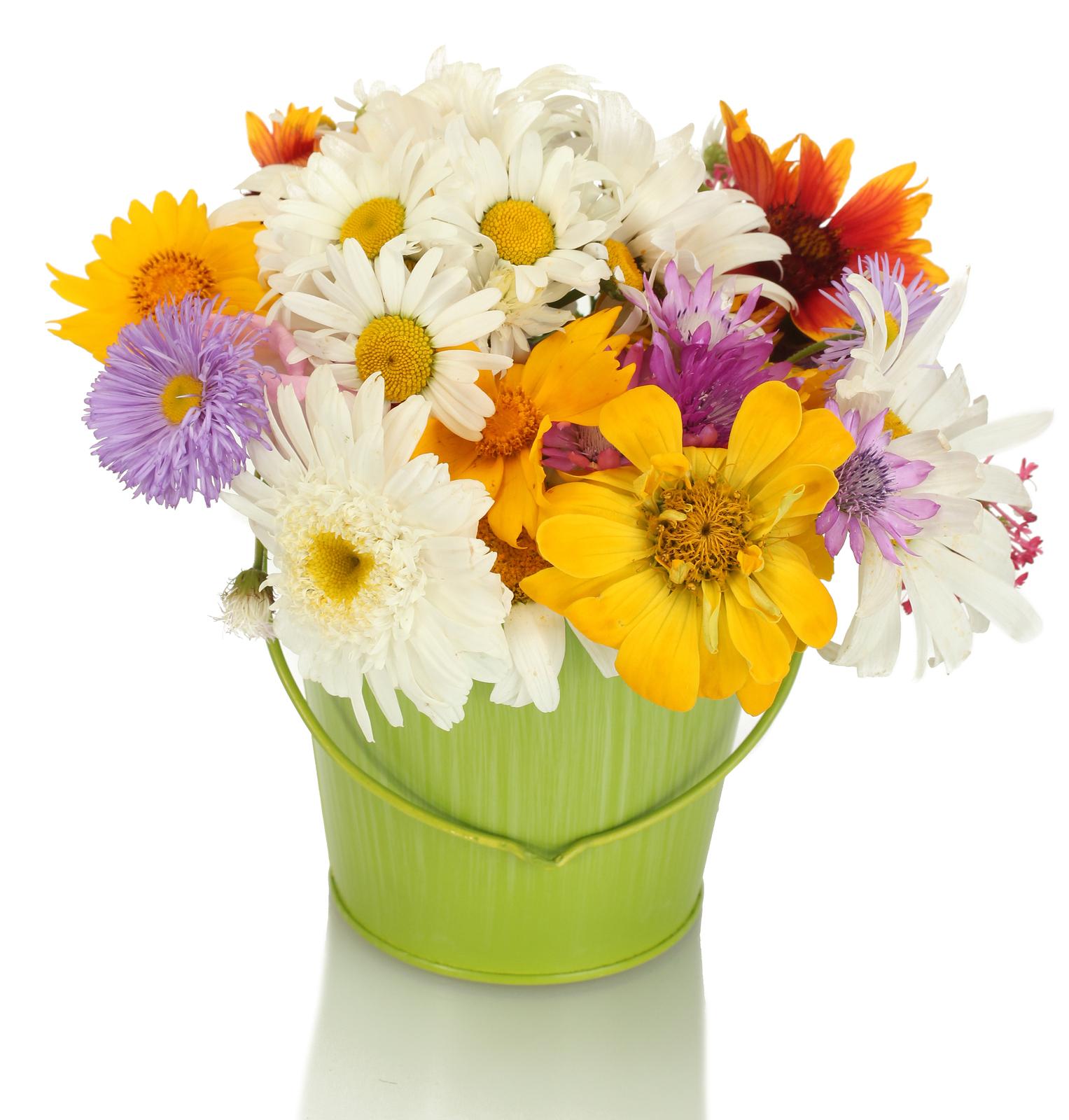 Come scattare le migliori foto di fiori per i social media