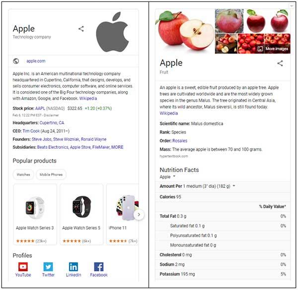 Risultati dei motori di ricerca per Apple Tech Company e Apple Fruit