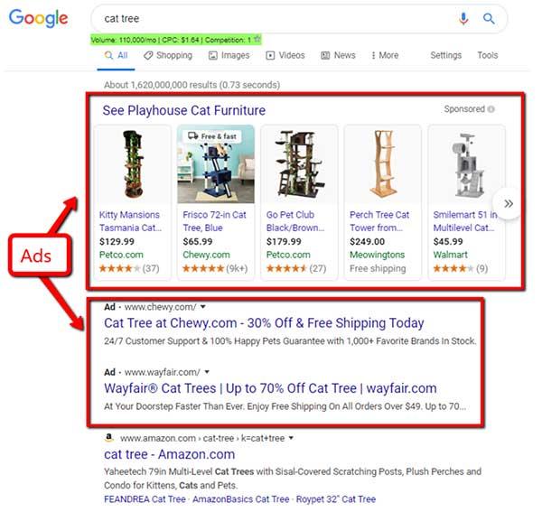 Albero di gatto risultati di ricerca di Google