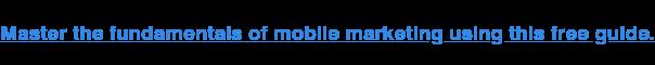 Padroneggia i fondamenti del marketing mobile utilizzando questa guida gratuita.