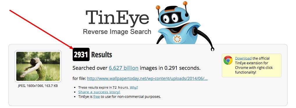 2931 risultati da tineye per una foto d'archivio.
