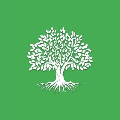 Sostituisci le squadre Amazon con la piattaforma Influencer per piantare 12000 alberi