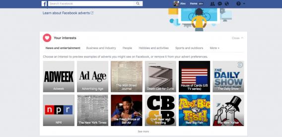 esempio del profilo psicografico di Facebook di un individuo.