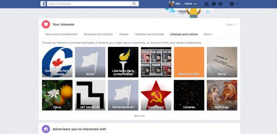 esempio di rapporto sugli interessi su Facebook.