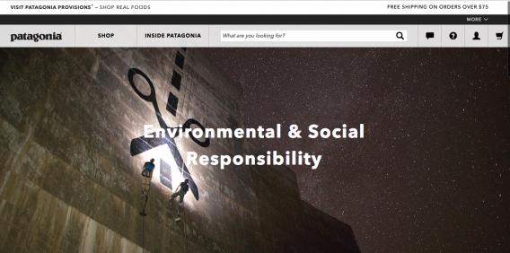 sito web patagonia che elenca i valori del suo marchio.