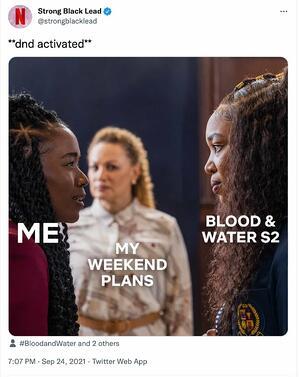 esempio di meme marketing di Netflix