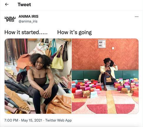 esempio di meme marketing di Anima Iris